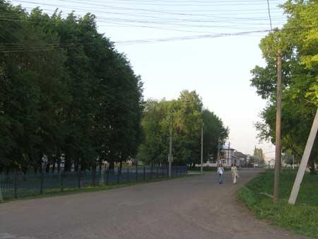 Наш зеленый город