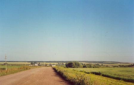 Дорога. Автор - Ильмира
